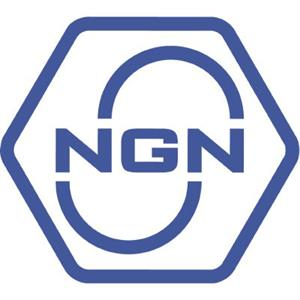 логотип NGN