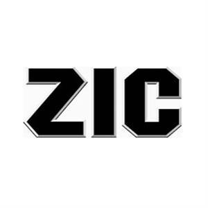 логотип ZIC